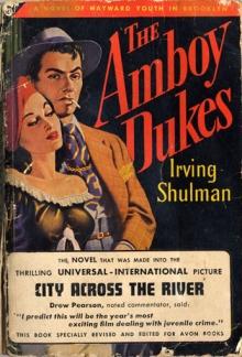 The Amboy Dukes / by Irving Shulman